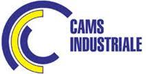 wwwcamsindcom